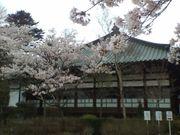Kitakoshi04